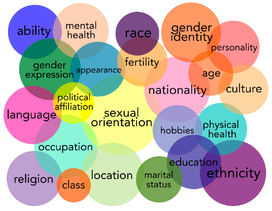 Overlapping circles of a large Venn Diagram with different aspects of social categorizations (e.g., ability, race, sexual orientation, class) symbolizing intersectionality