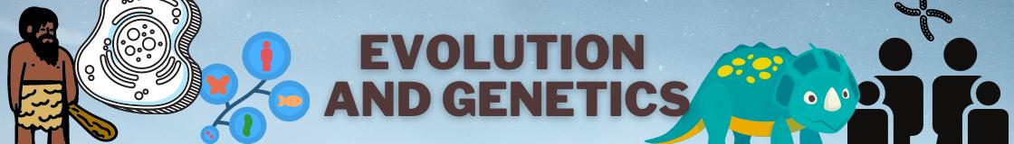 Evolution and Genetics Banner