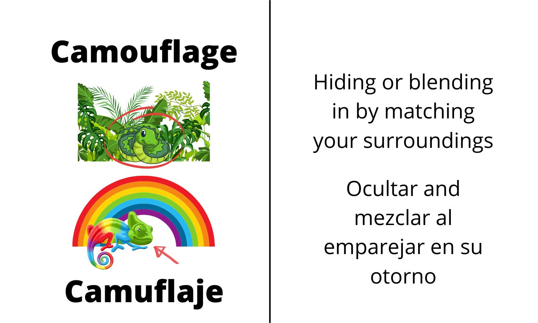 Camoflage: Hiding or blending in by matching your surroundings. Camuflaje: Ocultar and mezclar al emparejar en su otorno